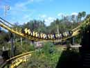 Busch Gardens Tampa 01