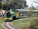 Busch Gardens Tampa 06