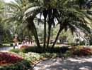 Busch Gardens Tampa 07