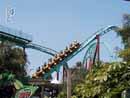 Busch Gardens Tampa 09