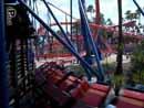 Busch Gardens Tampa 12