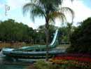 Busch Gardens Tampa 13