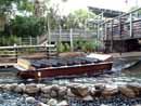 Busch Gardens Tampa 14