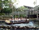 Busch Gardens Tampa 15