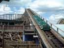 Busch Gardens Tampa 17