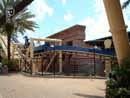 Busch Gardens Tampa 18