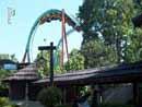 Busch Gardens Tampa 21