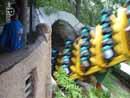 Busch Gardens Tampa 22
