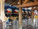 Busch Gardens Tampa 23