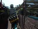Busch Gardens Tampa 24