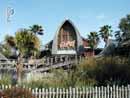Busch Gardens Tampa 29