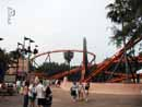 Busch Gardens Tampa 32