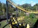 Busch Gardens Tampa 34