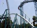 Busch Gardens Williamsburg 19