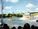 SeaWorld Orlando 001