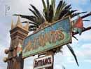 SeaWorld Orlando 002