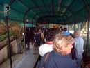 Parco Zoo Falconara 02