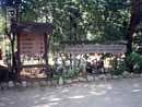Parco Zoo Falconara 04