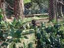 Parco Zoo Falconara 06