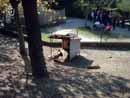 Parco Zoo Falconara 08