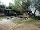 Parco Zoo Falconara 10