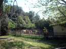 Parco Zoo Falconara 11