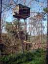 Parco Zoo Falconara 13