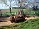 Parco Zoo Falconara 16