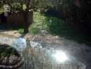 Parco Zoo Falconara 24