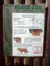 Parco Zoo Falconara 29