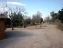 Parco Zoo Falconara 31