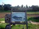 Parco Zoo Falconara 32