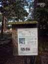 Parco Zoo Falconara 39