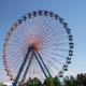 Cedar Point 054
