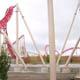 Cedar Point 162