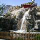 Cedar Point 172