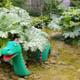 Legoland Billund 061