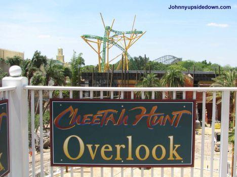Busch Gardens Tampa A breve i primi test di Cheetah Hunt