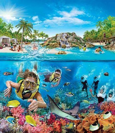 SeaWorld Orlando Tra pochi giorni sarà pronto il Grand Reef al Discovery Cove