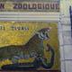 Zoo di Anversa - Zoo Antwerpen 002