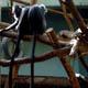 Zoo di Anversa - Zoo Antwerpen 018