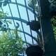 Zoo di Anversa - Zoo Antwerpen 072