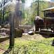 Zoo di Anversa - Zoo Antwerpen 099