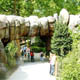 Zoo di Anversa - Zoo Antwerpen 136