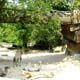 Zoo di Anversa - Zoo Antwerpen 137