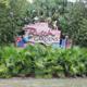 Busch Gardens Tampa 001