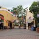 Busch Gardens Tampa 005