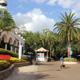 Busch Gardens Tampa 006
