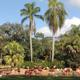 Busch Gardens Tampa 028