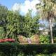 Busch Gardens Tampa 030